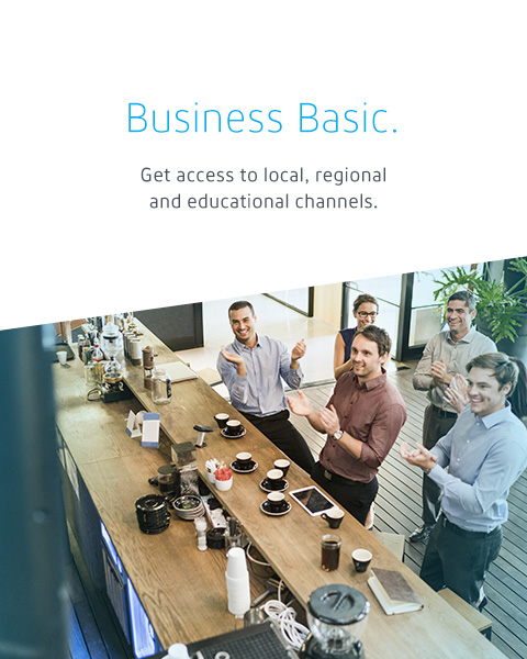 Business Basic: Get access to local, regional and educational channels.
