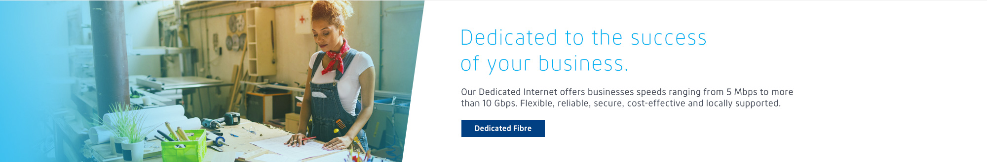 Dedicated Internet Fibre